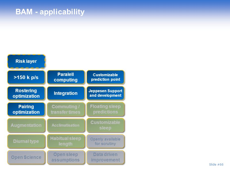 BAM - applicability >150 k p/s Risk layer Paralell computing
