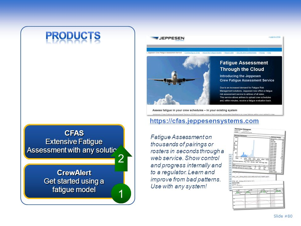 2 1 Products CFAS Extensive Fatigue Assessment with any solution