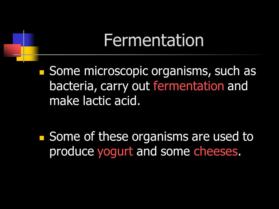 Fermentation Some microscopic organisms, such as bacteria, carry out fermentation and make lactic acid.