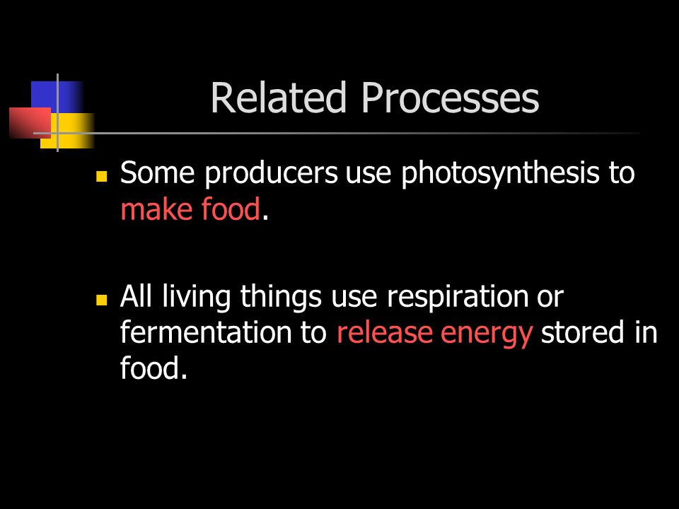 Related Processes Some producers use photosynthesis to make food.