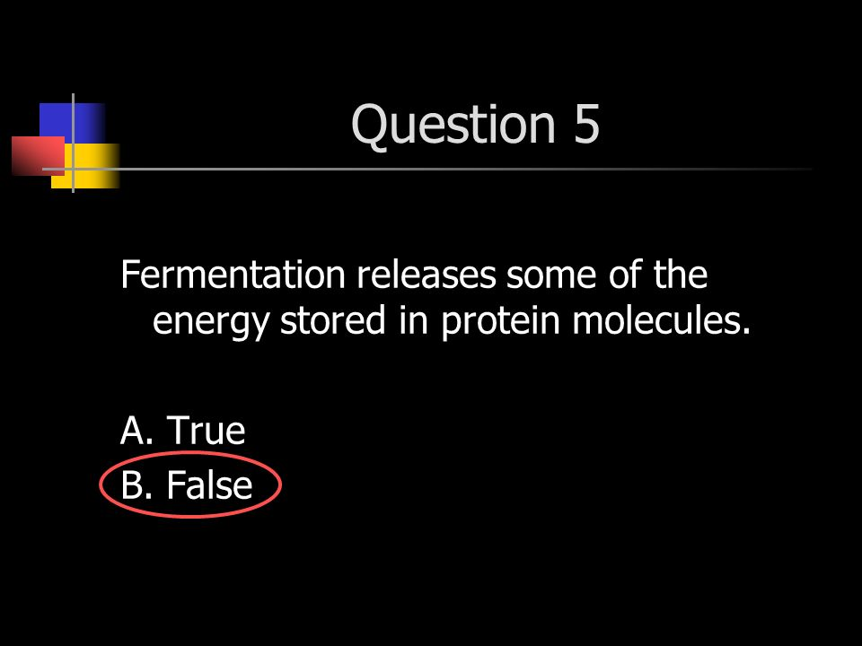 Question 5 Fermentation releases some of the energy stored in protein molecules. A. True B. False