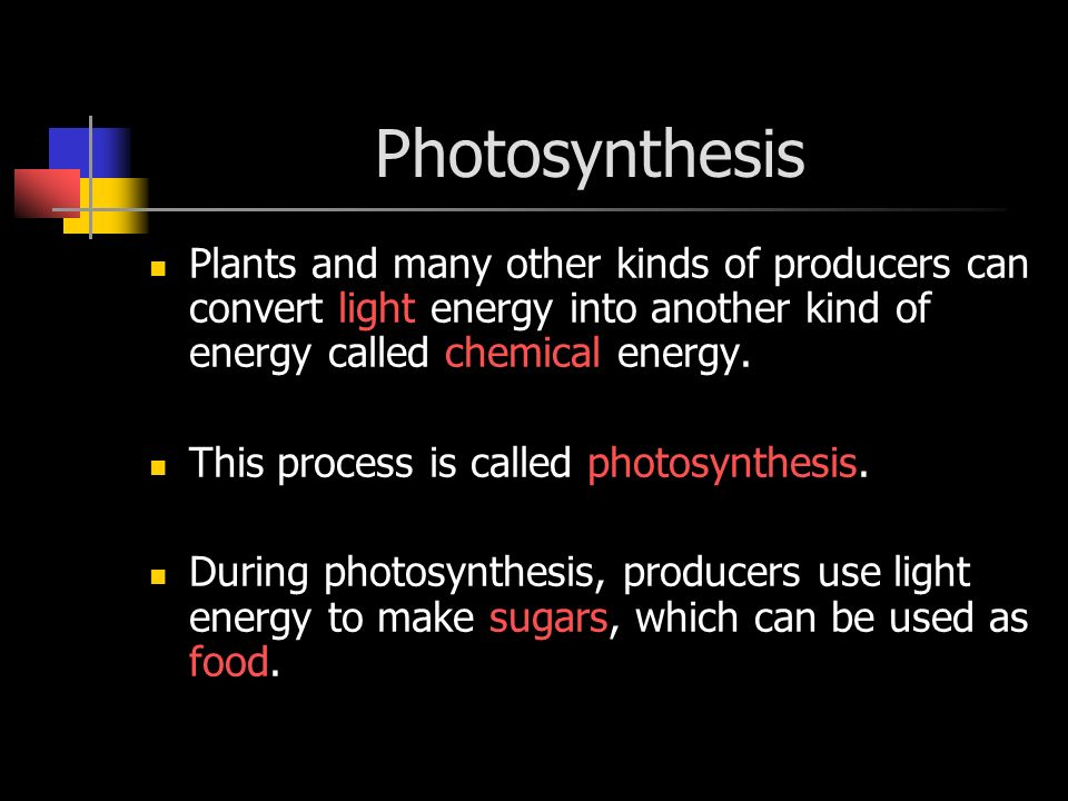 Photosynthesis Plants and many other kinds of producers can convert light energy into another kind of energy called chemical energy.