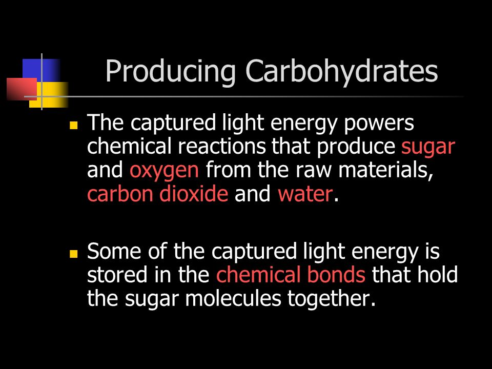 Producing Carbohydrates
