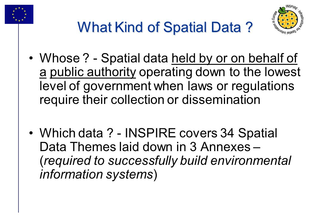 What Kind of Spatial Data
