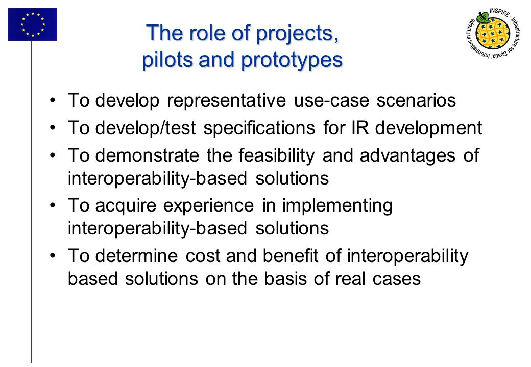 The role of projects, pilots and prototypes