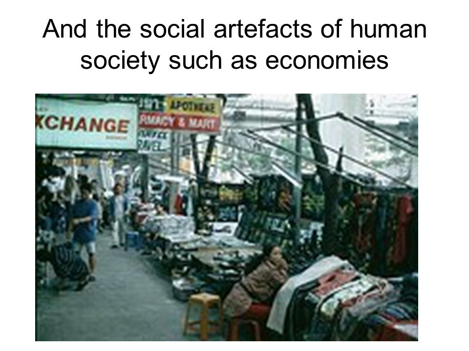 And the social artefacts of human society such as economies