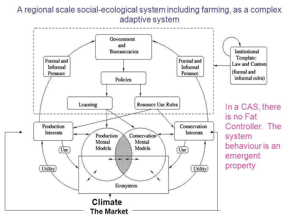 A regional scale social-ecological system including farming, as a complex adaptive system
