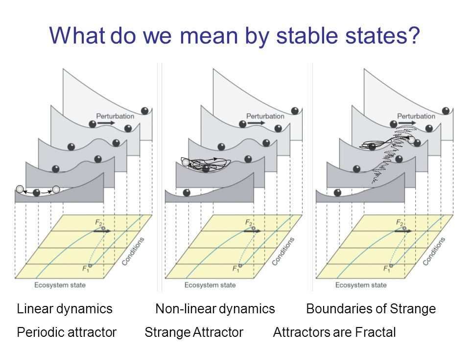 What do we mean by stable states