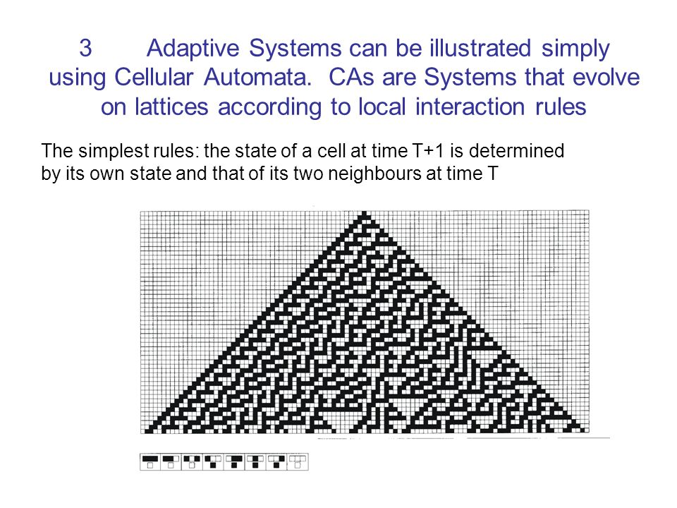 3. Adaptive Systems can be illustrated simply using Cellular Automata