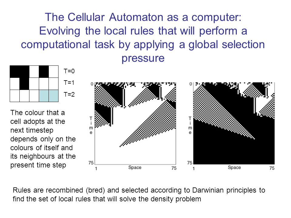 The Cellular Automaton as a computer: Evolving the local rules that will perform a computational task by applying a global selection pressure