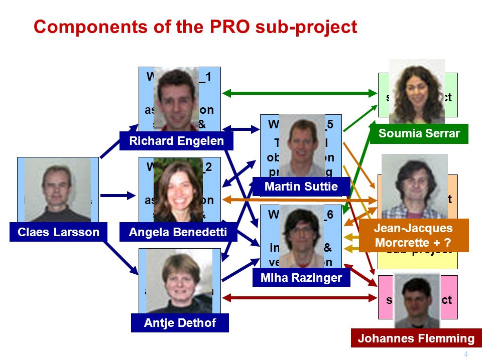 Components of the PRO sub-project