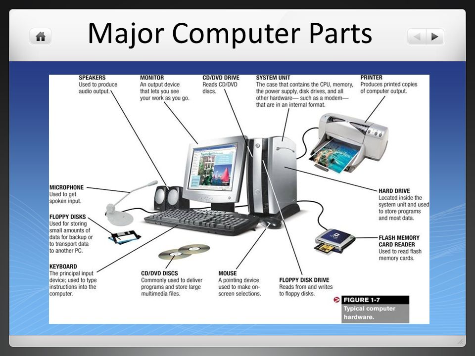 Different Parts of the Computer and Their Function