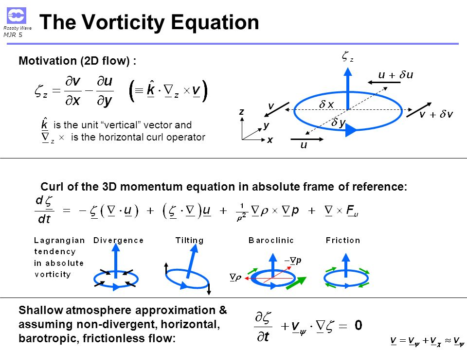The Vorticity Equation