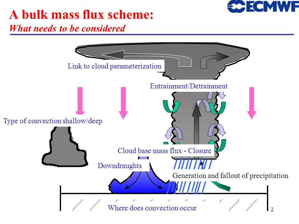A bulk mass flux scheme: What needs to be considered