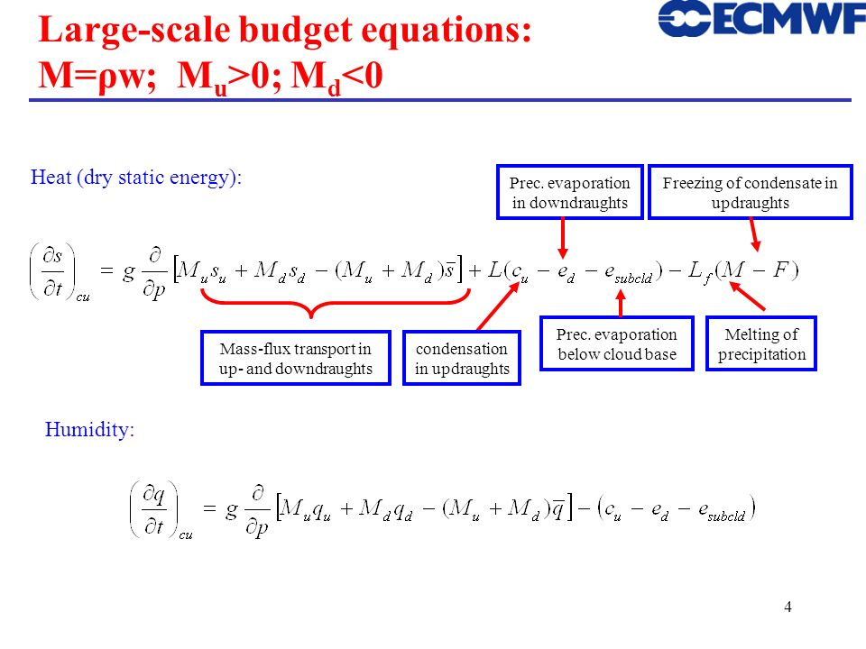 Large-scale budget equations: M=ρw; Mu>0; Md<0