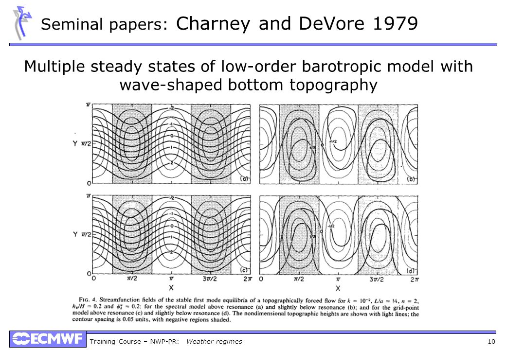 Seminal papers: Charney and DeVore 1979