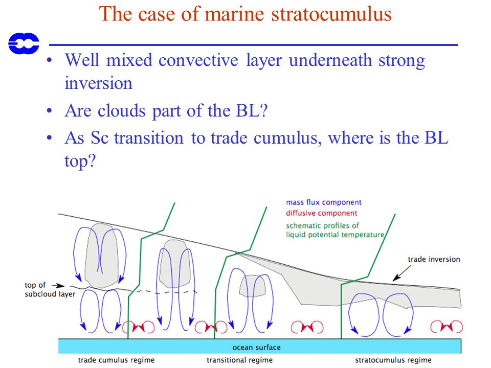 The case of marine stratocumulus