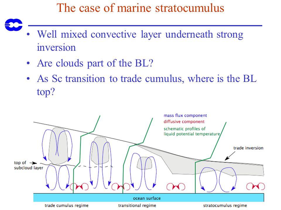 The case of marine stratocumulus