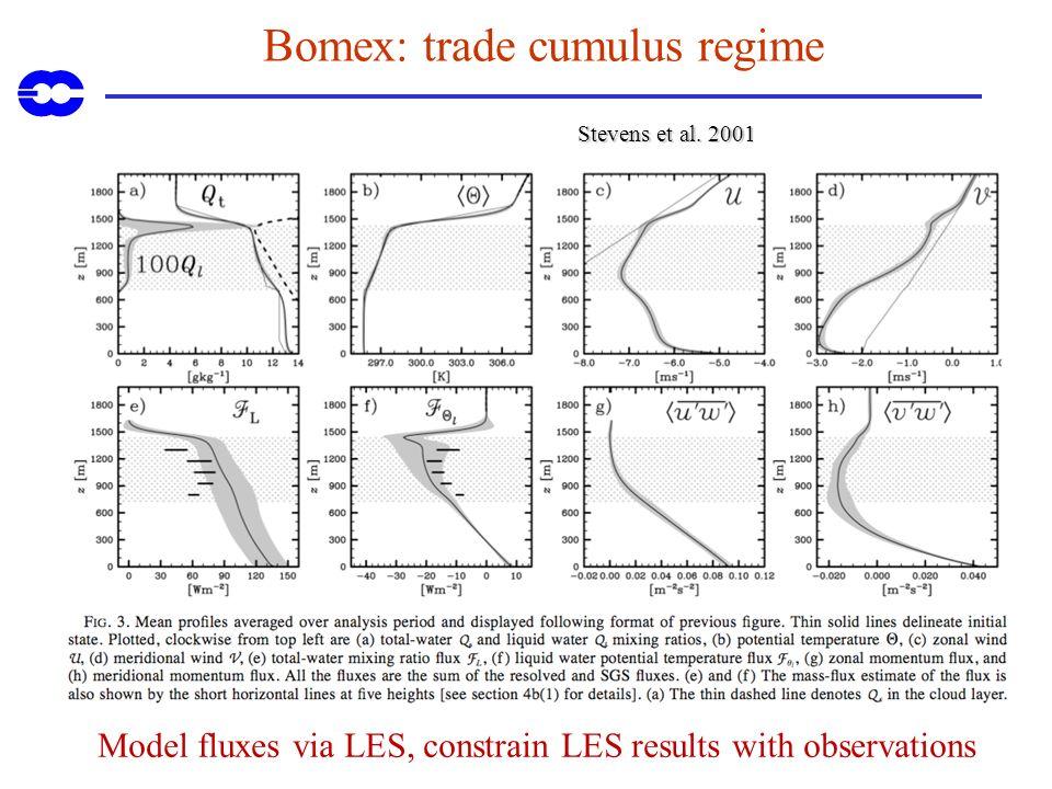 Bomex: trade cumulus regime