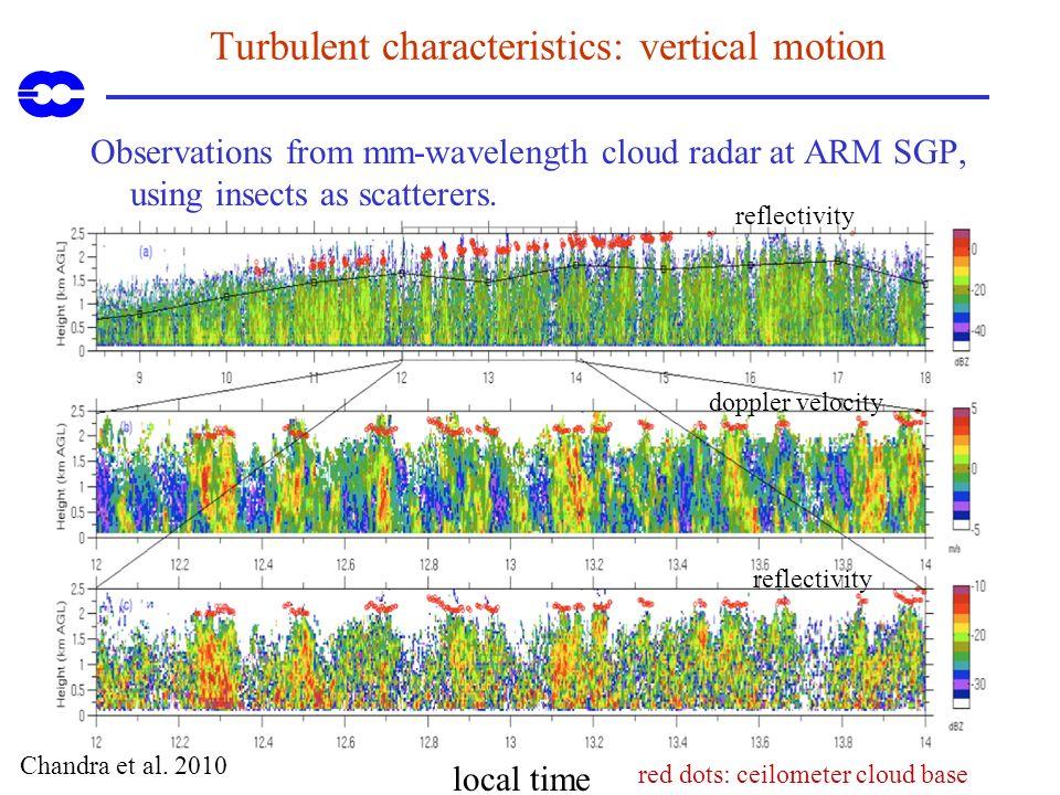 Turbulent characteristics: vertical motion