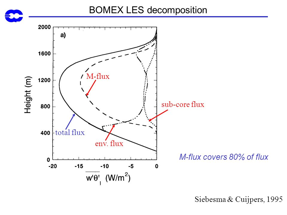 BOMEX LES decomposition
