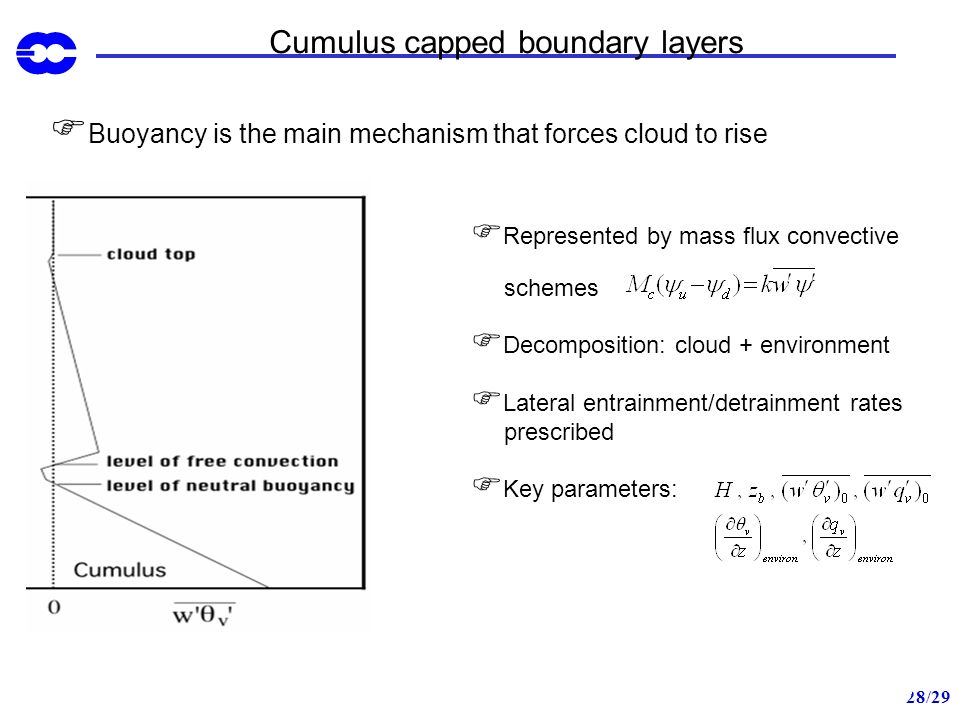 Cumulus capped boundary layers