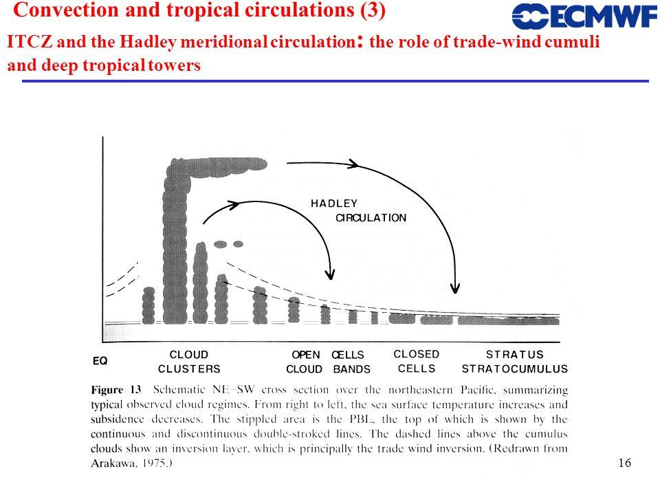Convection and tropical circulations (3) ITCZ and the Hadley meridional circulation: the role of trade-wind cumuli and deep tropical towers