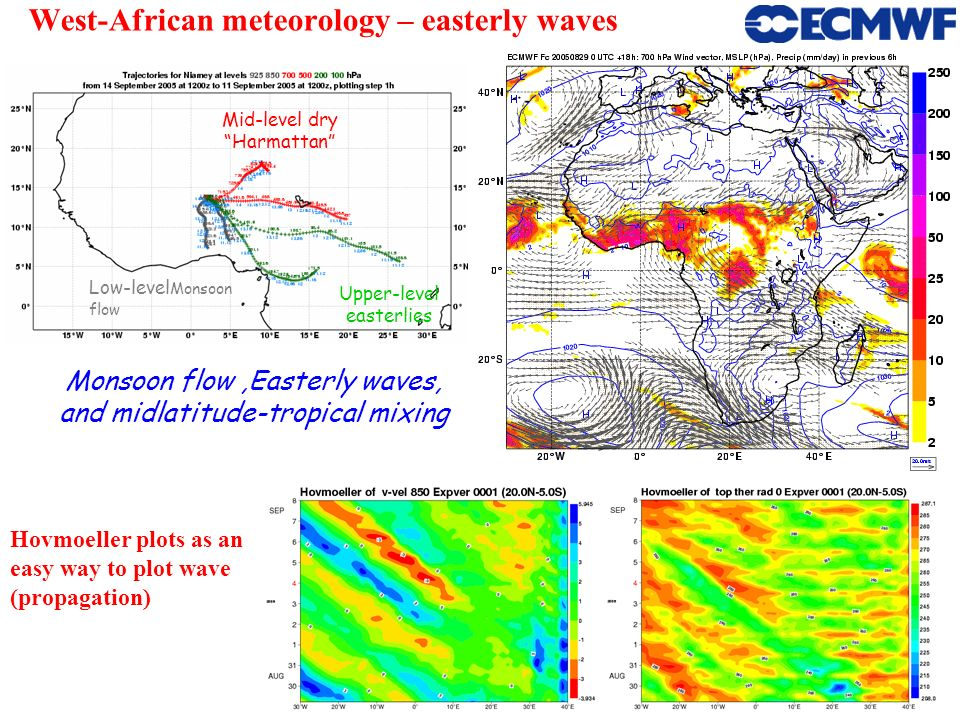 West-African meteorology – easterly waves