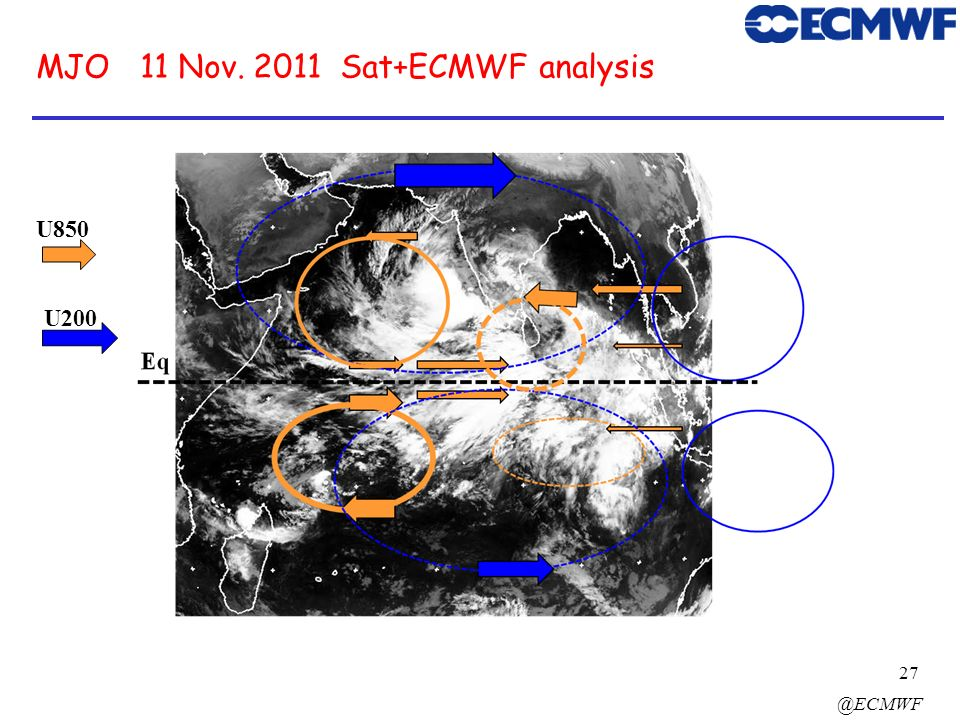 MJO 11 Nov Sat+ECMWF analysis