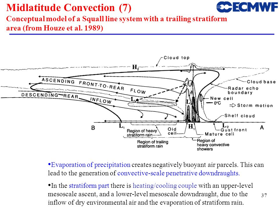 Midlatitude Convection (7) Conceptual model of a Squall line system with a trailing stratiform area (from Houze et al. 1989)