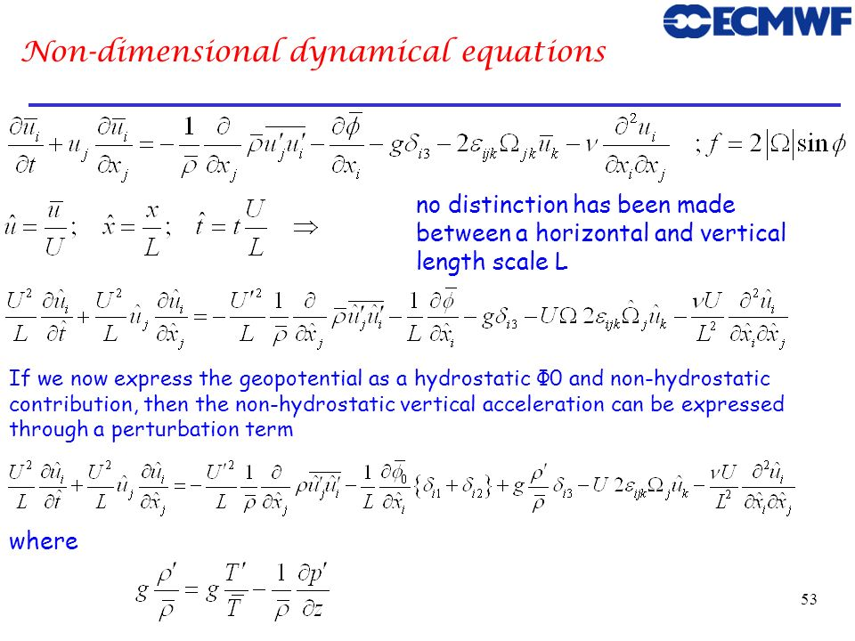 Non-dimensional dynamical equations