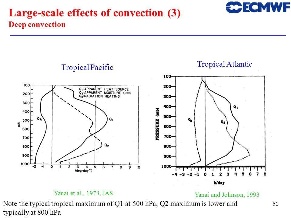 Large-scale effects of convection (3) Deep convection