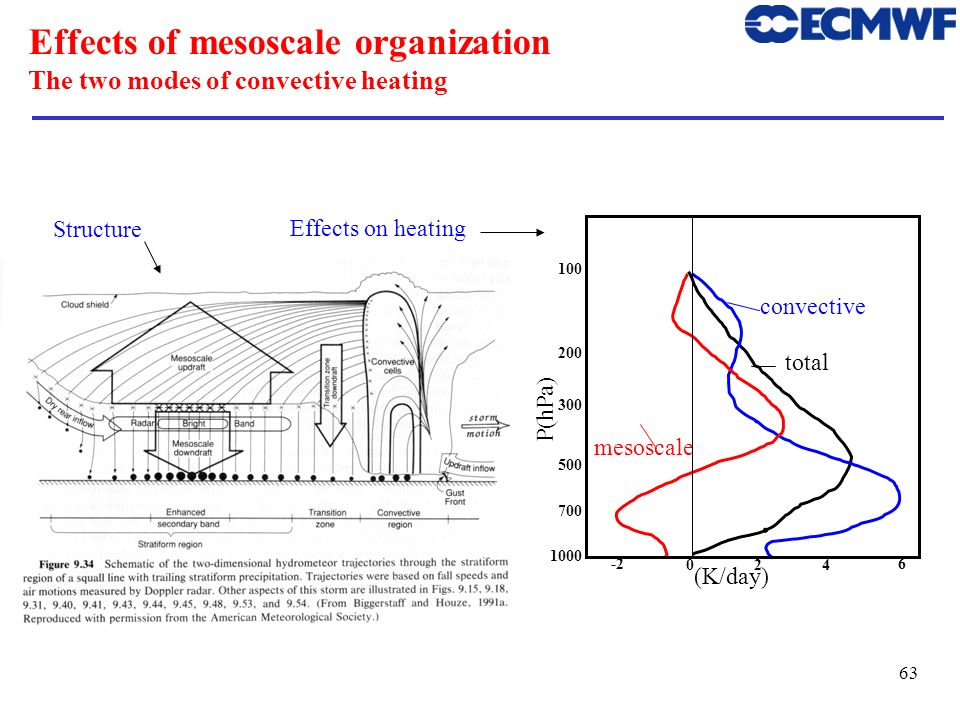 Effects of mesoscale organization The two modes of convective heating