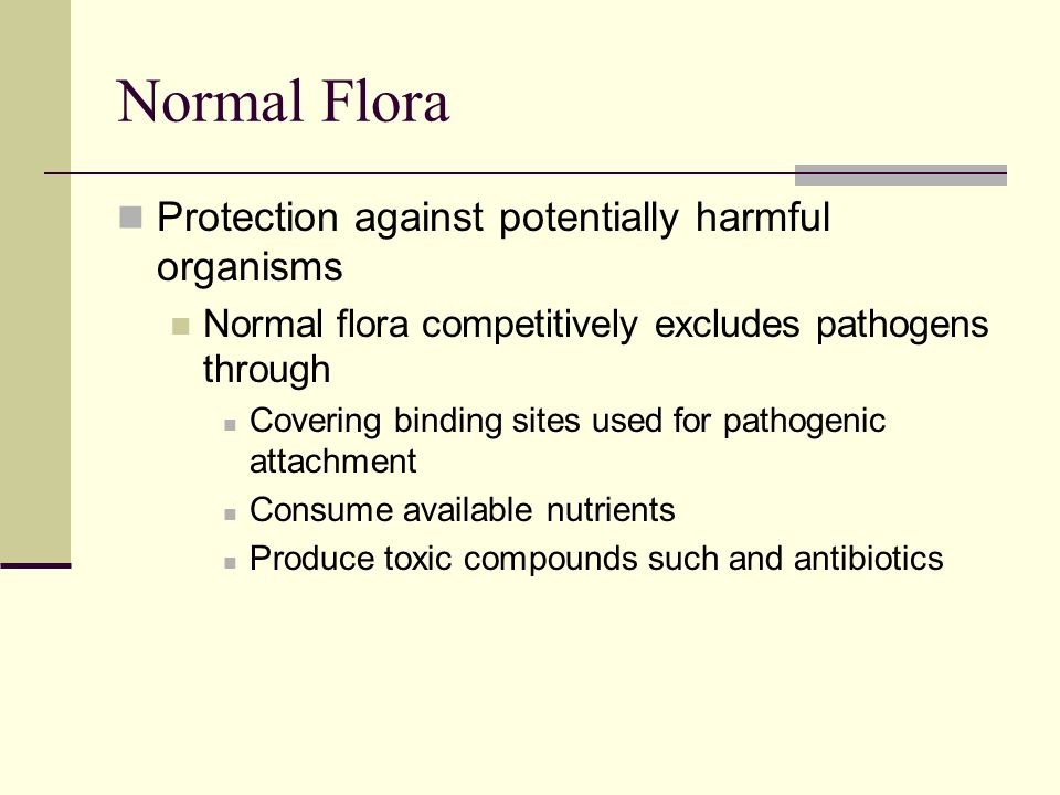 Host microbe interactions ppt download for Flore definition