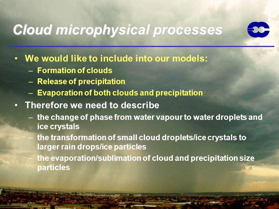 Cloud microphysical processes
