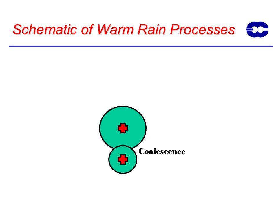 Schematic of Warm Rain Processes