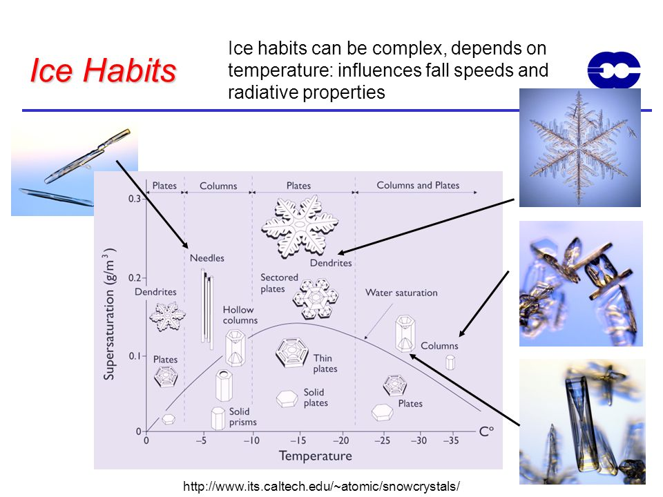 Ice habits can be complex, depends on temperature: influences fall speeds and radiative properties