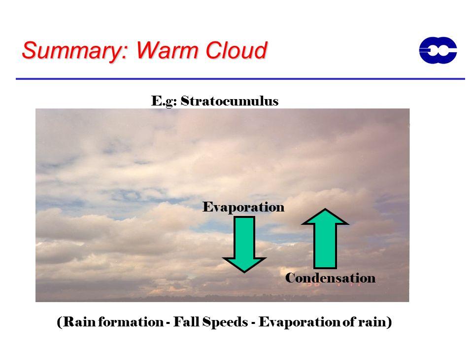 Summary: Warm Cloud E.g: Stratocumulus Evaporation Condensation