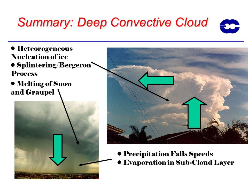 Summary: Deep Convective Cloud
