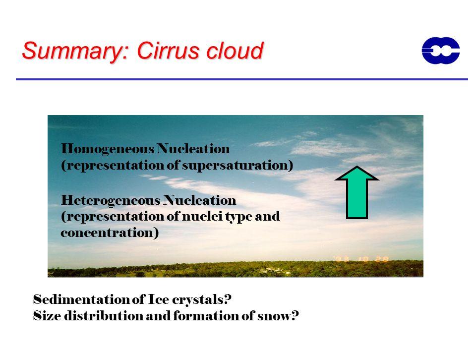 Summary: Cirrus cloud Homogeneous Nucleation