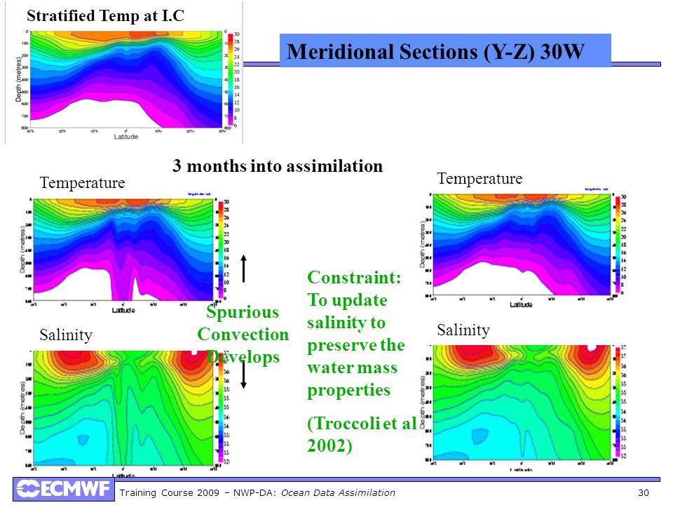 Spurious Convection Develops