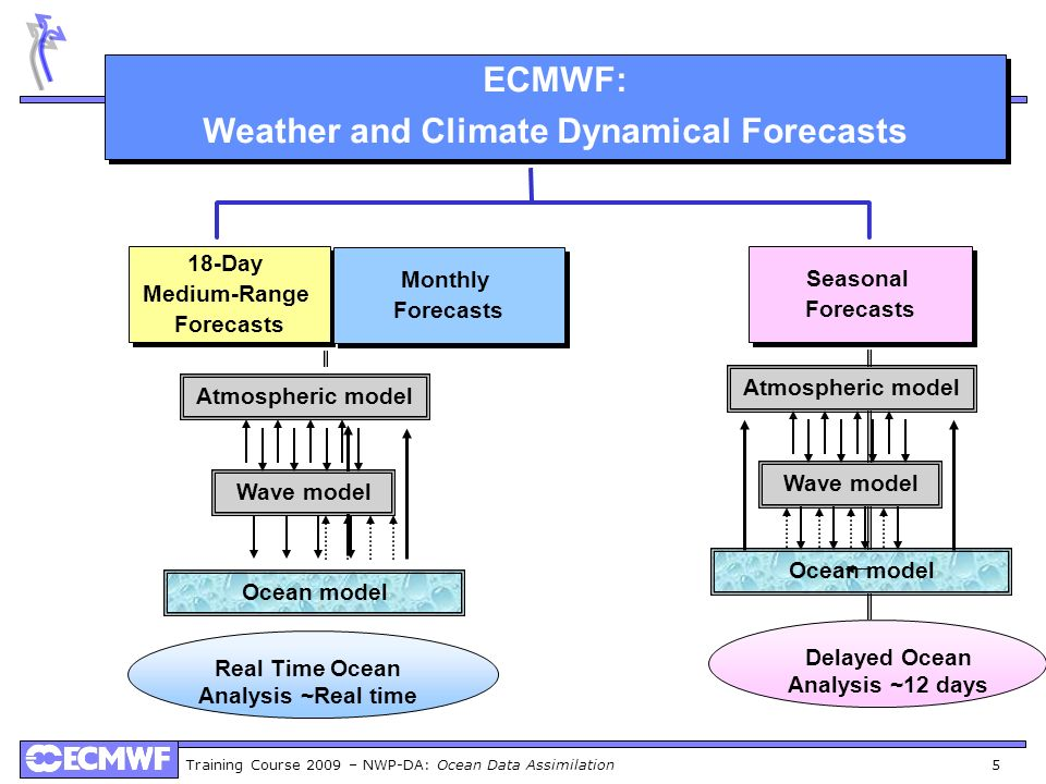 Weather and Climate Dynamical Forecasts