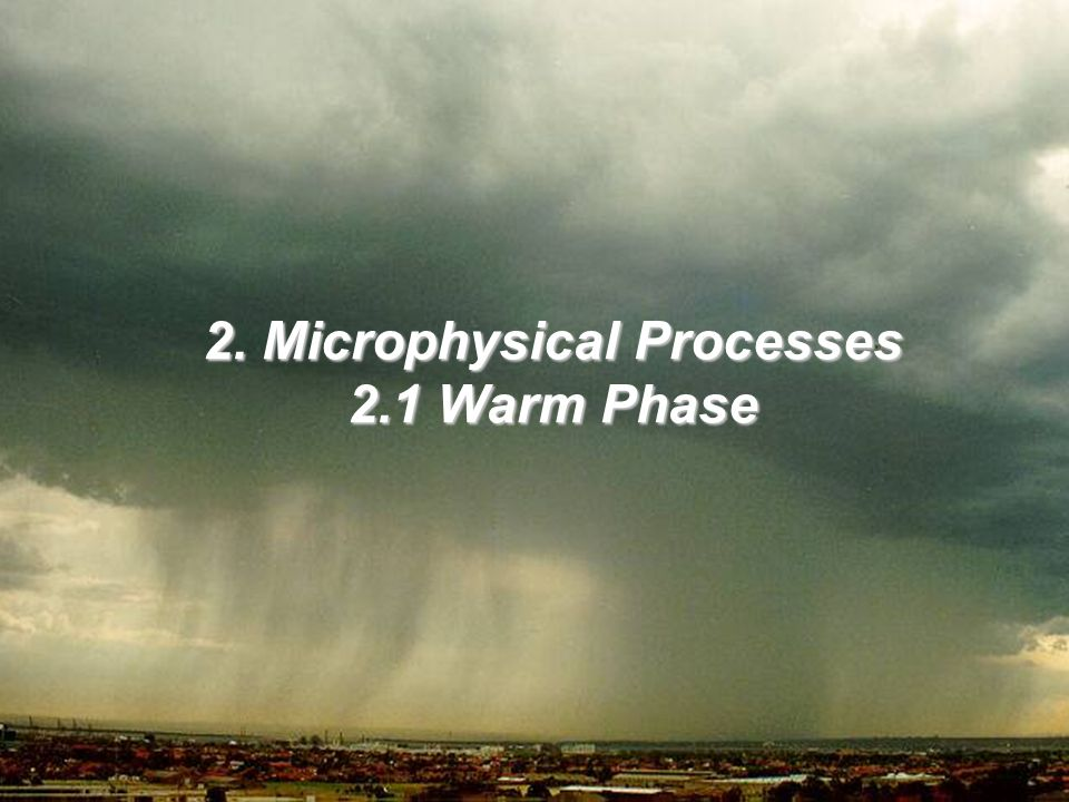 2. Microphysical Processes 2.1 Warm Phase