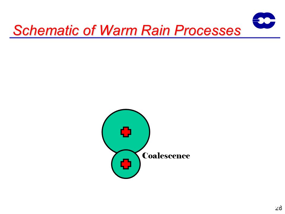 Schematic of Warm Rain Processes