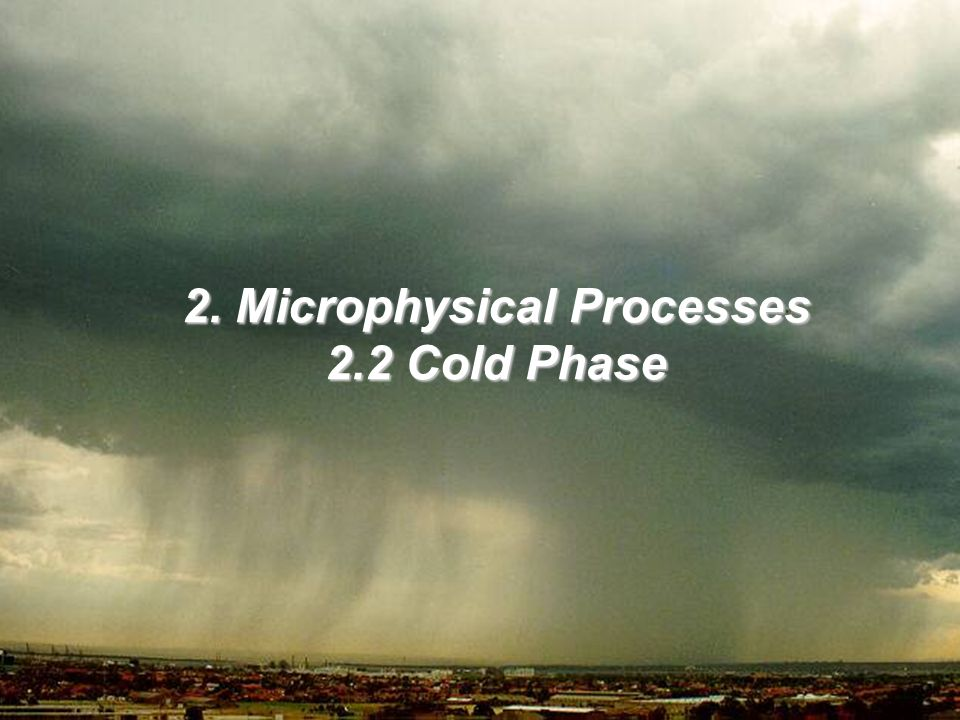 2. Microphysical Processes 2.2 Cold Phase