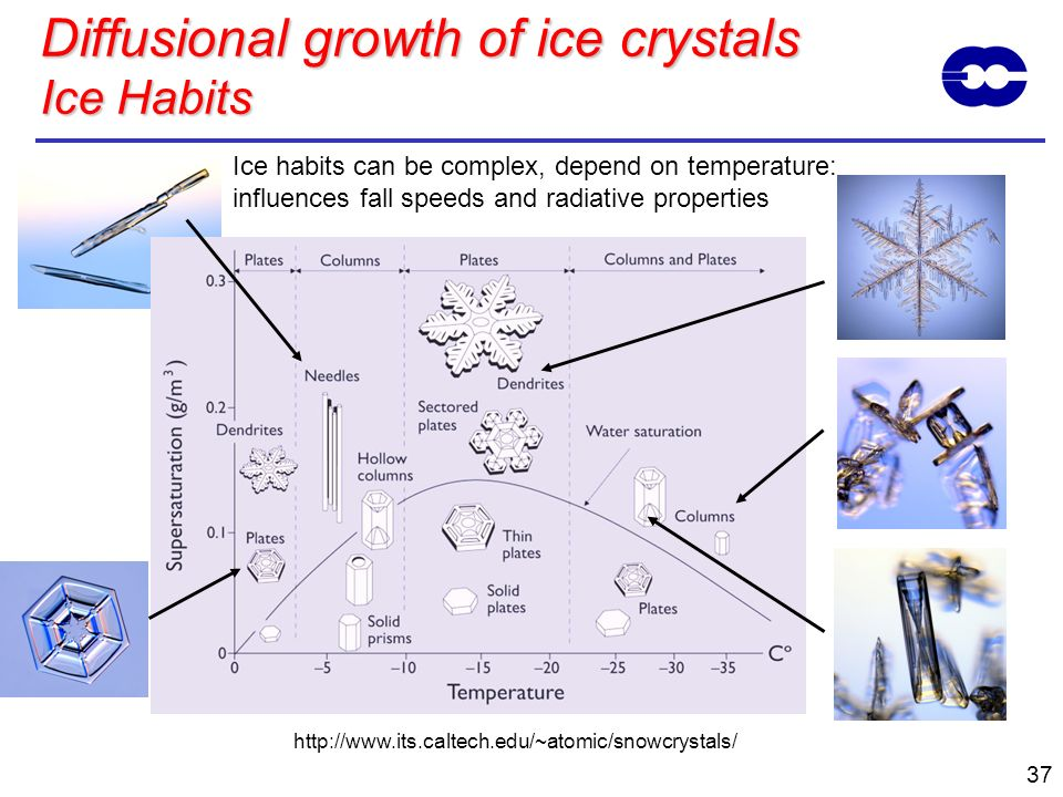 Diffusional growth of ice crystals Ice Habits
