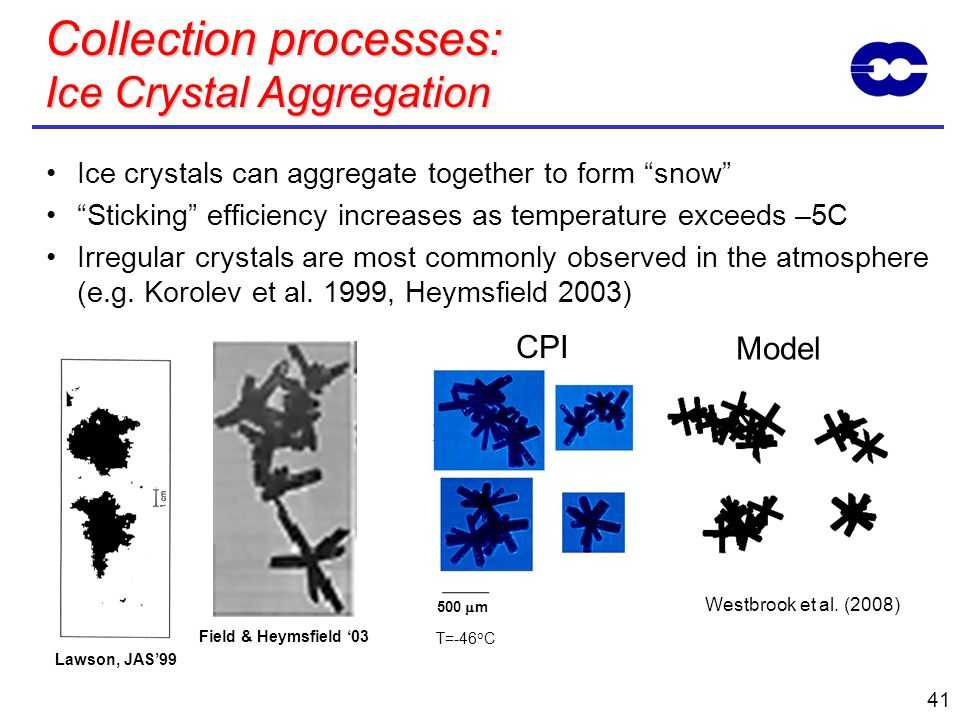 Collection processes: Ice Crystal Aggregation