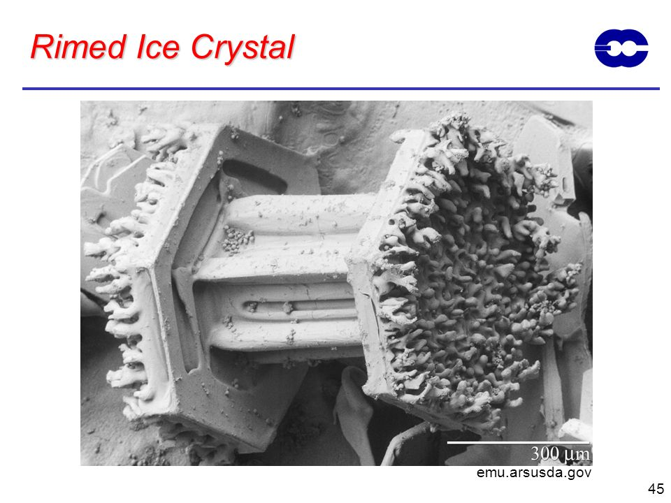 Rimed Ice Crystal emu.arsusda.gov