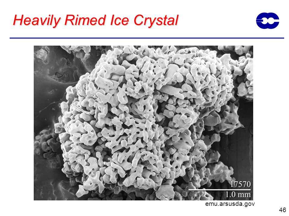 Heavily Rimed Ice Crystal
