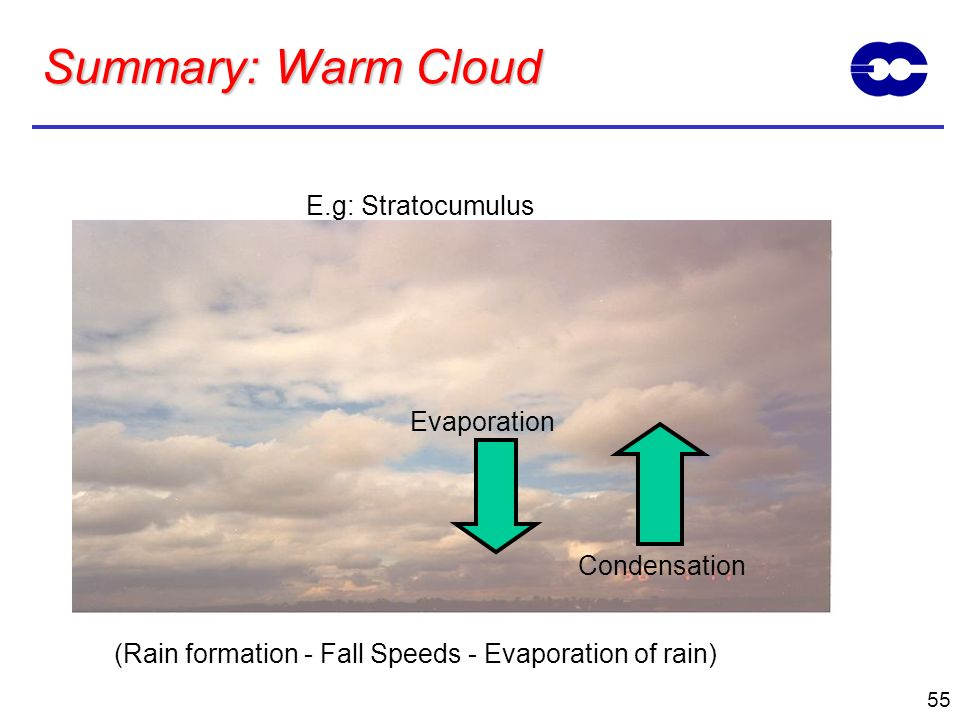 Summary: Warm Cloud E.g: Stratocumulus Evaporation Condensation